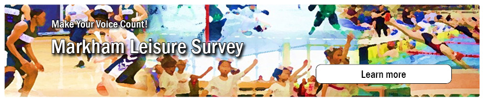 Leisure Survey